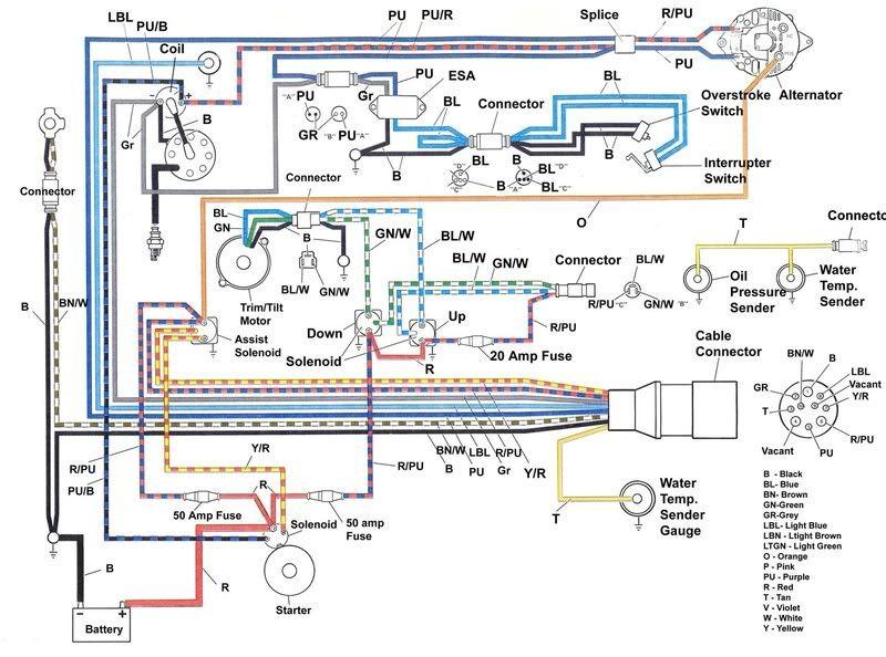diagram sea ray ignition wiring diagram full version hd