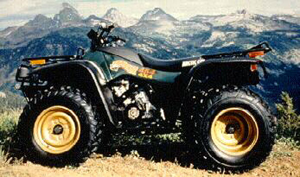 1996 Arctic Cat Bearcat 454 Wiring Diagram