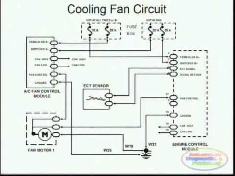 2011 Lincoln Mkz Climate Control Wiring Diagram on
