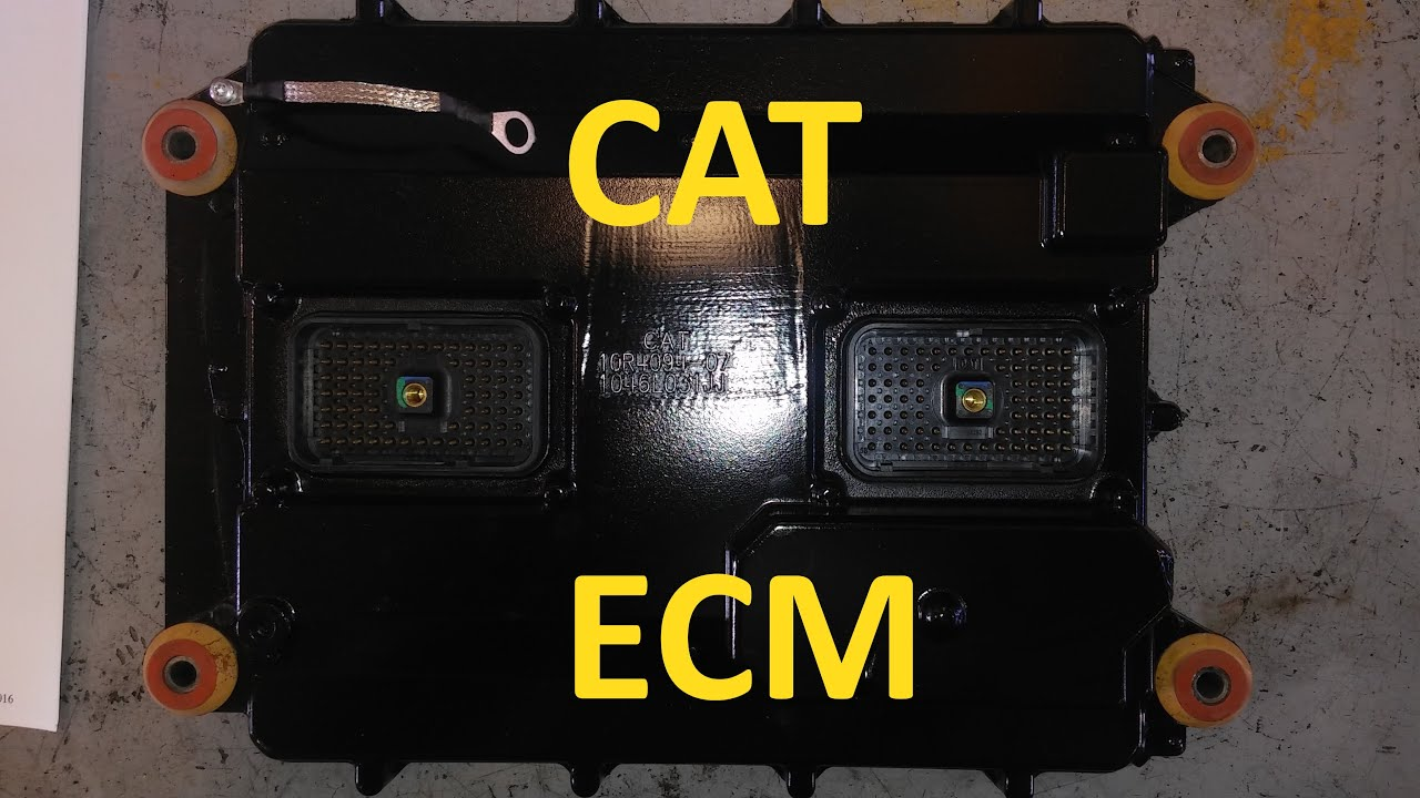 3126 cat engine ecm wiring diagram 3126 cat engine torque specs