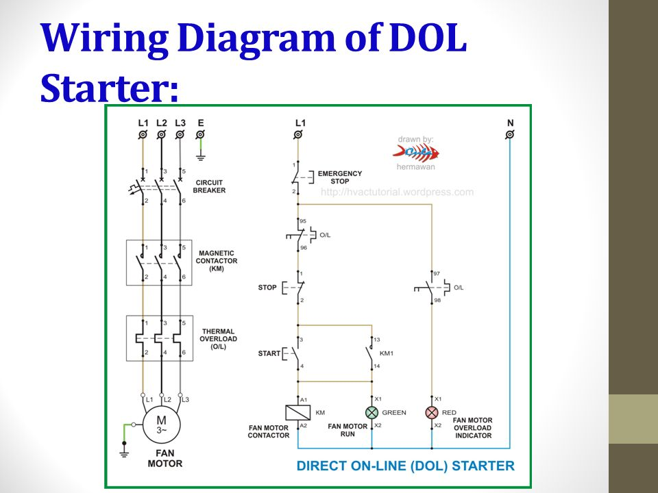 Diagram Motor Starter Overload Wiring Diagram Full Version Hd Quality Wiring Diagram Diagramdepot Gsxbooking It