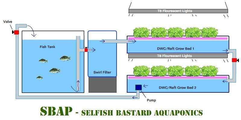Aquaponics Plumbing Diagram