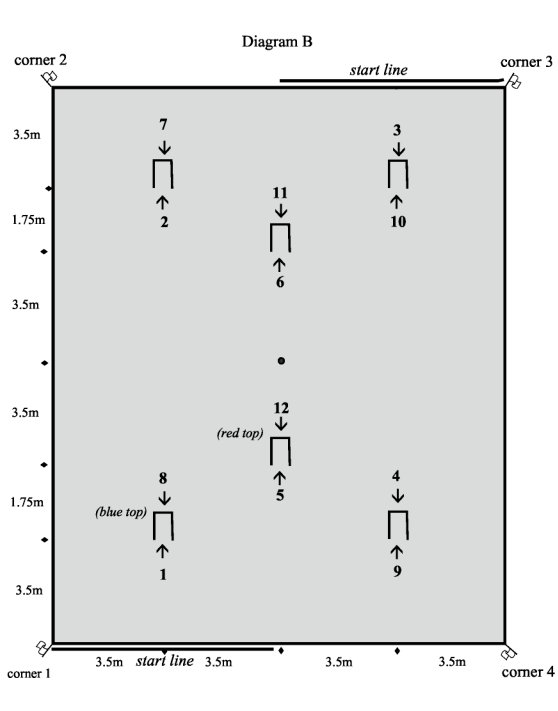 Croquet Layout Diagram