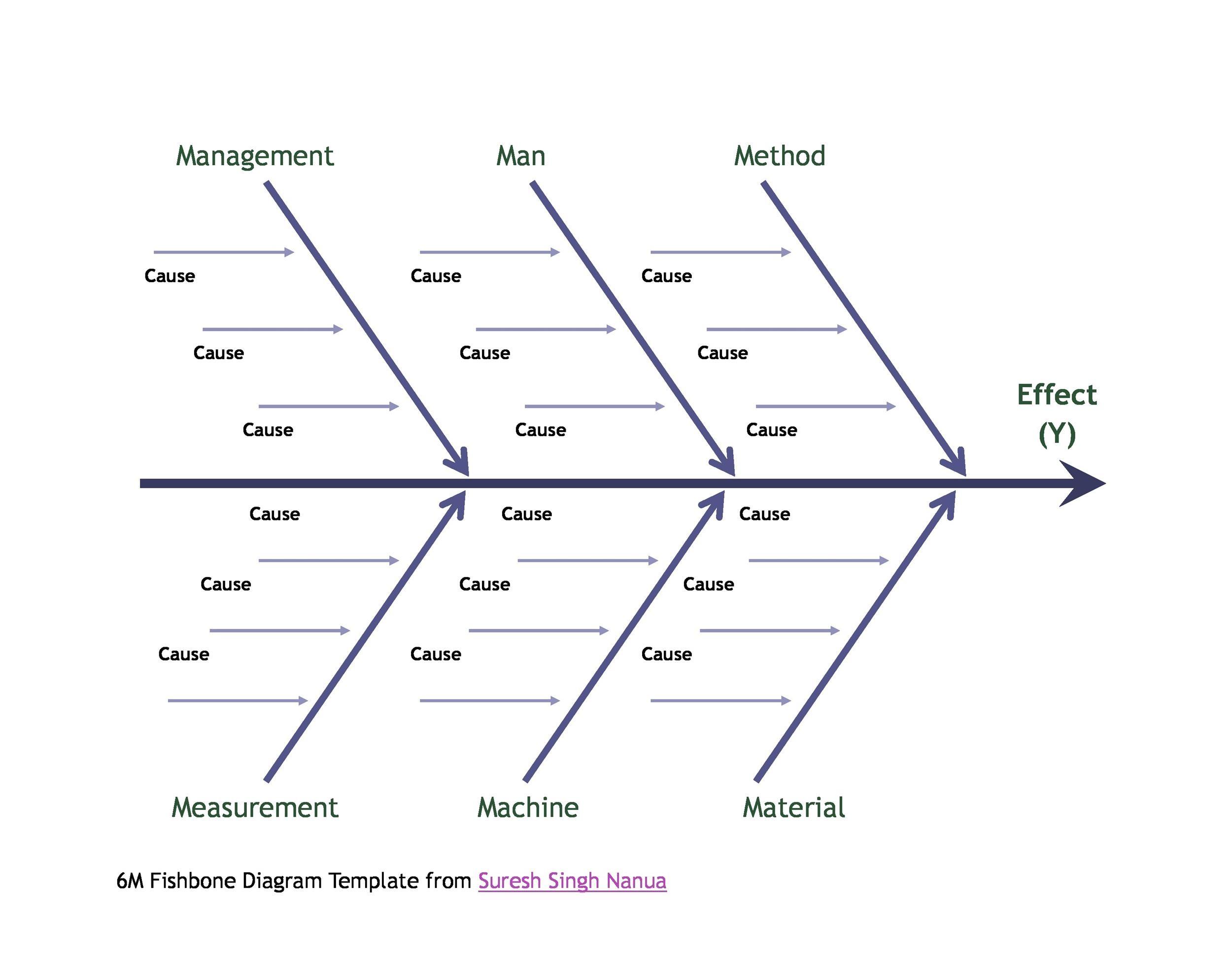 Fishbone Lab Diagram Microsoft Word