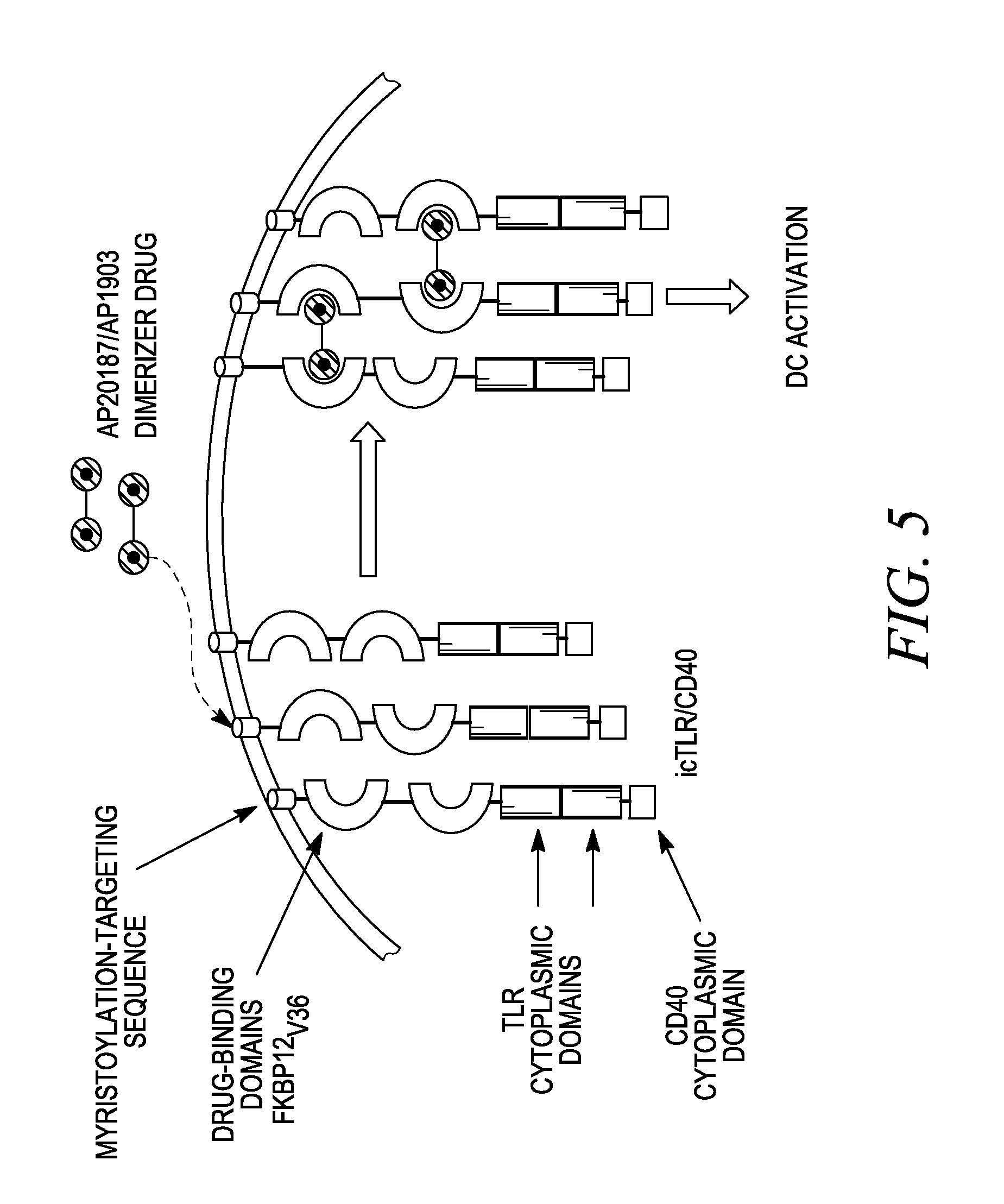 Mastrcon Wiring Diagram