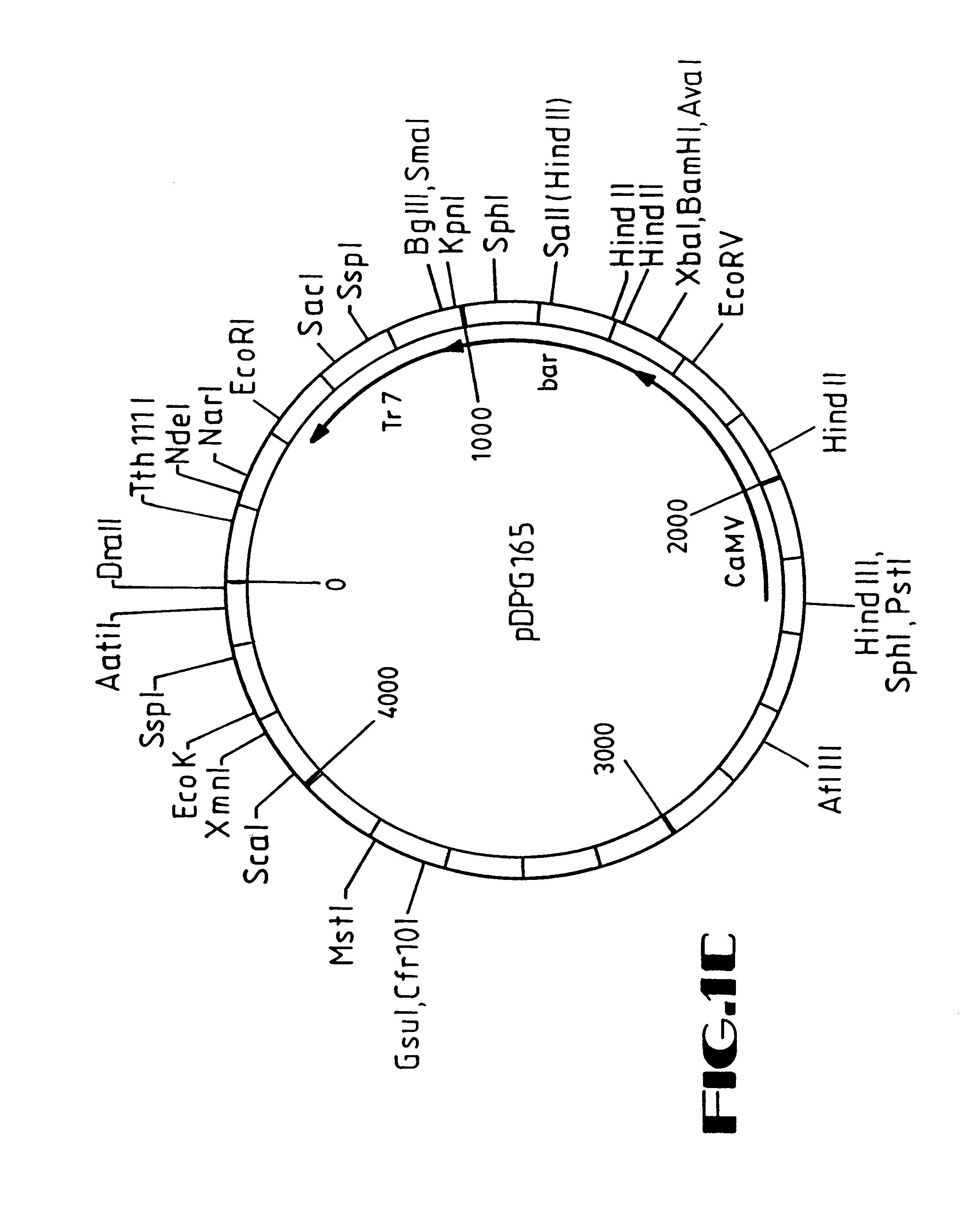 pioneer deh p3700mp wiring diagram Pioneer AVIC-D3 Wiring