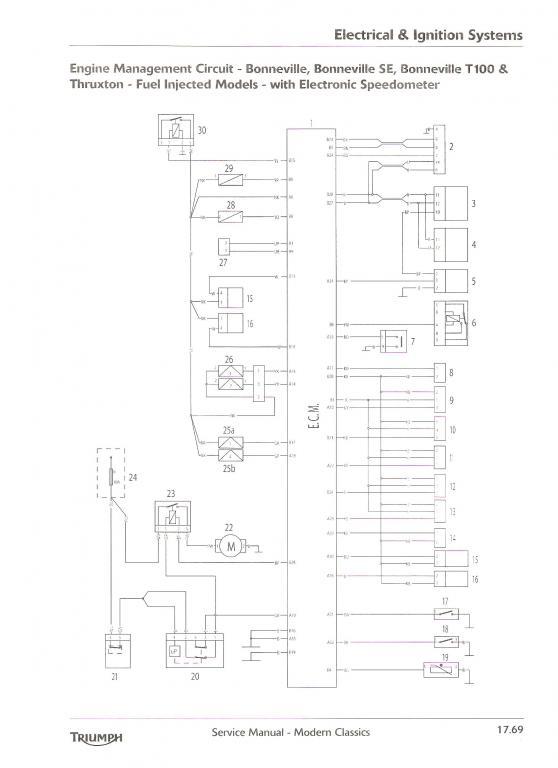 Triumph Thruxton Efi Wiring Diagram