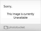 Yerf Dog Spiderbox Wiring Diagram